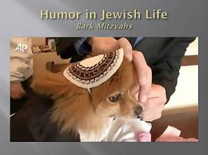 Bark Mitzvah - Nicky
